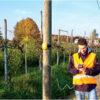Tester stanu technicznego słupów drewnianych CXI-PT5000